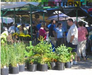 Entrance of Fulton Street Farmers Market, Grand Rapids, MI 49503