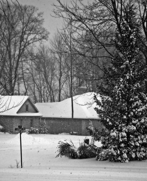 Winter storm, Grand Rapids Michigan 2008