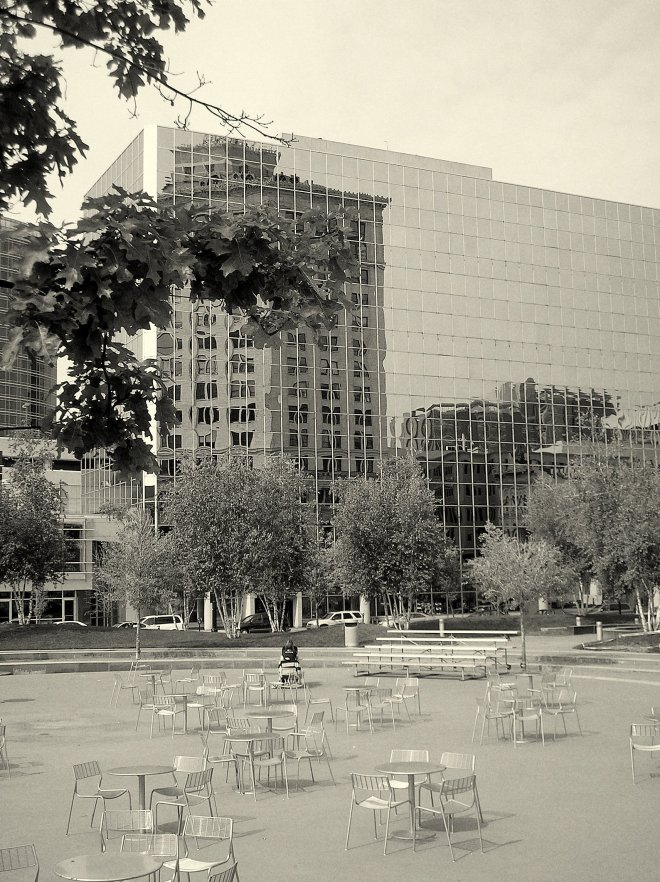View of Rosa Parks Circle from the Grand Rapids Art Museum