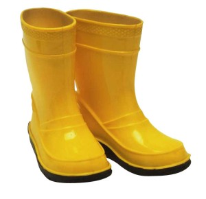 Rain boots...spring is around the corner...