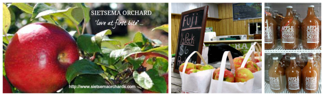 Sietsema Orchard in Ada, MI