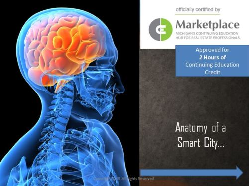 Anatomy of a Smart City Capture