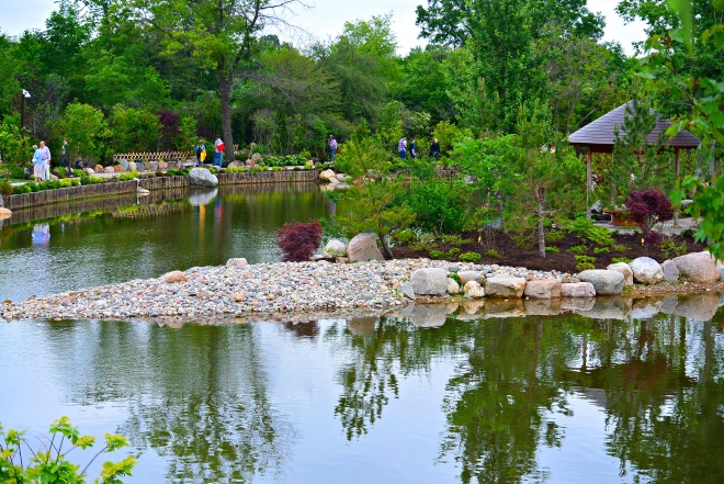 Japanese Garden 7